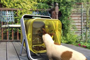 A protected outdoor dog feeder that safeguards your pet against Lungworm!