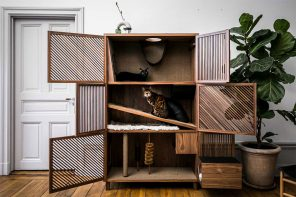 Sweden's first cat psychologist helped create this perfect cat home!