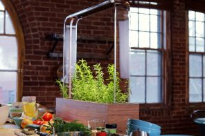 The Herb Garden gives you the independence of growing produce in your own home