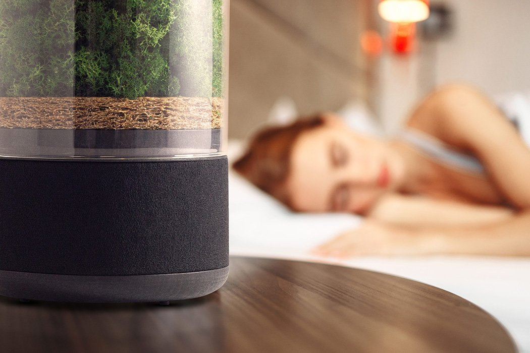This natural Air Purifier uses a miniature forest to rapidly clean your atmosphere! | Yanko Design