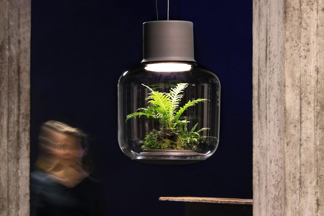 Planter designs that solve every millennials indoor gardening problems!
