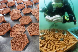 These 3D printed terracotta tiles along Hong Kong's coast are designed to revive the marine coral life!