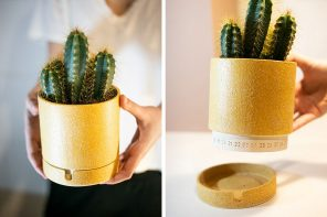 This creative planter lets you know when you watered it last!