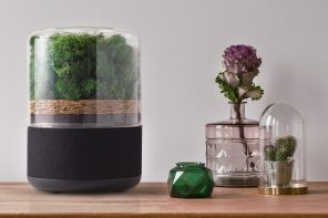 This natural air purifier uses a miniature forest to rapidly clean your atmosphere!