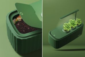 This self-sustaining compost system turns your food scraps into a thriving indoor garden!