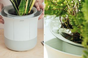 This smart gardening assistant solves the millennial problem of watering your plants while globetrotting!