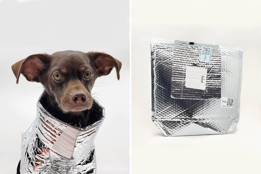 Из переработанной полипропиленовой упаковки модельер и креативный директор разработали зимнюю куртку для собак!