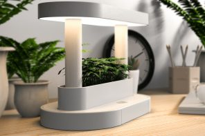 This minimal planter + table lamp design is the modern day desk accessory for every millennial home!