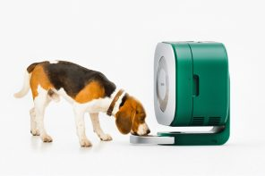 This portable pet refrigerator not only stores their food, but serves it to them as well!