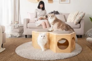 This multifunctional cat chair design doubles as a coffee table and keeps your cat off the couch!
