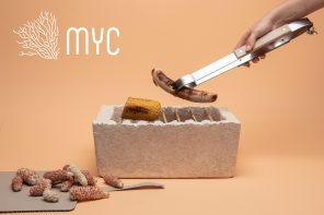 A Mycelium grill design, made from edible fungus can be biodegraded and fertilizes the earth!