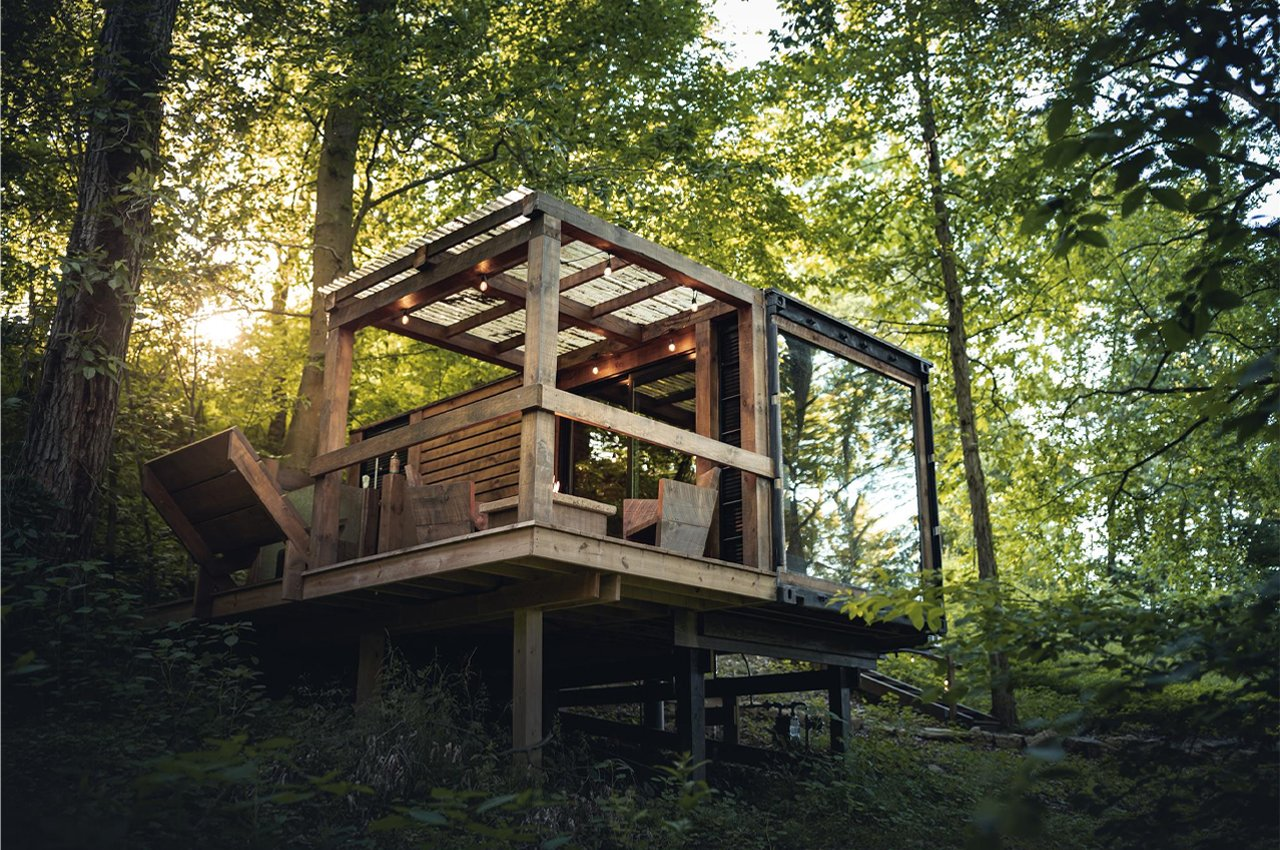 This tiny home built from an old shipping container brings modern design to an elusive forest environment!