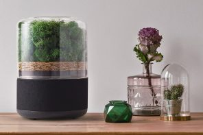 Last Chance to grab this tiny forest-powered natural air purifier at a discounted price!