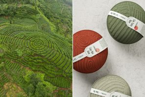 This eco-friendly packaging design for premium Chinese tea draws inspiration from the plantations!